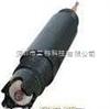 GP工业电极,GP100工业pH电极,GP200工业pH电极