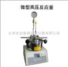 SLM50江苏批发微型高压反应釜