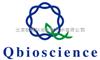 实时荧光定量PCR(Real-time PCR)技术服务
