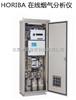 日本堀场在线分析仪 HORIBA ENDA-600ZG系列