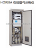 日本 堀场 在线烟气分析仪ENDA-600ZG系列