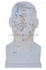 ZK-XC507/20CM头部四功能针灸模型(玻璃钢树脂材质)