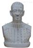 (头部四功能腧穴)头部针灸穴位模型(PVC材质)