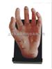 ZK-XC511(自然大)保健手模型(PVC树脂材质)