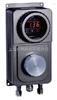 在线式常量氧分析仪 PGA530